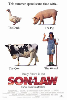 soninlawcover