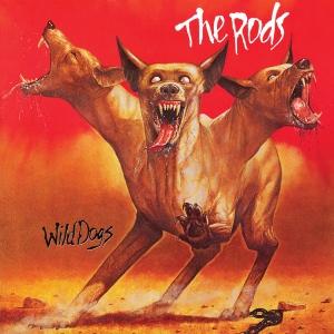 wild-dogs-541d88043e488